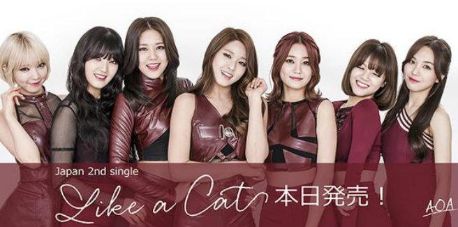 Le AOA rilasciano la versione giapponese di 'Like A Cat'