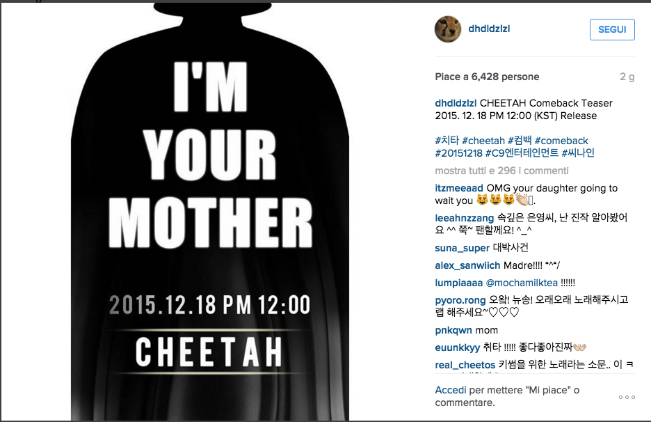 Cheetah_Instagram