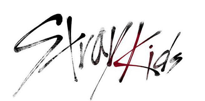 Nuovo survival tra i trainee delle JYP: 'Stray Kids'