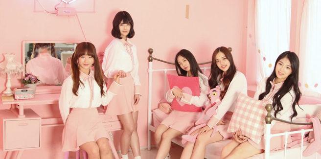 Le Girls' Alert debuttano con 'Dreamgirls'